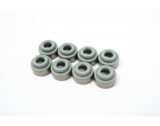 Exhaust Valve Stem Seals