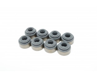 Intake Valve Stem Seal Set